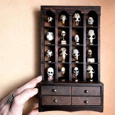 Got my skull cabinet all mounted up for my Bone Room in the Hall of Biodiversity 💀💀💀💀💀A little over half of these skulls are real, the other half are sculpted. Haunted Dollhouse, Haunted Dolls, Dollhouse Dolls, Dollhouse Miniatures, Miniature Furniture, Doll Furniture, Dollhouse Furniture, Halloween Doll, Halloween House