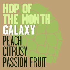 Hop of the Month_Galaxy