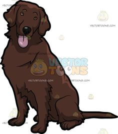 An Adorable Flat Coated Retriever Dog :  A dog with brown black flat coat and droopy ears sits on the floor while looking ahead as it parts its lips to reveal a pink tongue  The post An Adorable Flat Coated Retriever Dog appeared first on VectorToons.com.   #clipart #vector #cartoon