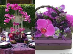 I think these purple flowers (sweet peas, anenomes and phaleonopsis orchids) would be a beautiful contrast to your hot pink accents.