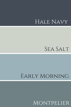 Sherwin Williams Sea Salt, Sherwin Williams Navy, Color Palette For Home, Paint Colors For Home, Outside House Paint Colors, Cottage Paint Colors, Office Paint Colors, Farmhouse Paint Colors, Blue Paint Colors