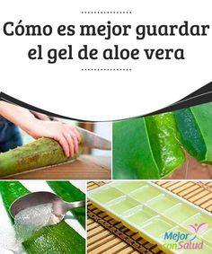 Cómo es mejor guardar el gel de aloe vera How it is better to store the aloe vera gel The aloe vera plant has been one of the most valued in recent decades, since it has been proven that its propertie Gel Aloe, Aloe Vera Gel, French Beauty Secrets, Aloe Vera Face Mask, Natural Kitchen, Natural Cosmetics, Alternative Medicine, Beauty Care, Diy Beauty