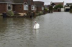 Householders and businesses need to plan long-term flood prevention
