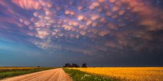 Storm chaser Mike Hollingshead from Nebraska has captured incredible photos of 'bubble clouds' in the sky (shown). Known as mammatus clouds the structures form behind storms. Beautiful Sky, Beautiful World, Beautiful Images, Mammatus Clouds, Cumulonimbus Cloud, Supercell Thunderstorm, Dame Nature, Cloud Photos, Night Skies