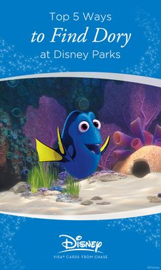 After premiering in Disney•Pixar's Finding Nemo 13 years ago, it's Dory's turn to get found in Disney•Pixar's Finding Dory this June, but why wait? Dory can already be found all over the Disney Parks, from shows and attractions to friends you can take home!