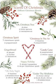 Young Living Essential Oils: Scents of Christmas Diffuser Blends Essential Oils Christmas, Yl Essential Oils, Essential Oil Diffuser Blends, Young Living Essential Oils, Young Living Oils, Illustration Noel, Christmas Scents, Christmas Hair, Christmas Music
