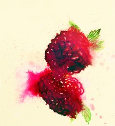 watercolor berries make my mouth water