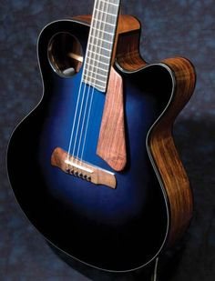 Ribbecke Guitar's makes some of the finest modern archtops available today! This  gives you the full scoop on Ribbecke and his instruments! Guitar Room, Jazz Guitar, Cool Guitar, Lake Placid Blue, Fender Acoustic, Resonator Guitar, Wall Of Fame, Beautiful Guitars, Music Theory