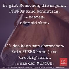 MANCHE VERSTEHEN ES EINFACH NICHT... LIKE & SHARE!!!! Besuche uns: www.emma-pferdefuttershop.de & www.my-mash.de/ Equine Quotes, Equestrian Quotes, Equestrian Problems, Horse Quotes, Christmas Horses, Horse And Human, Riding Quotes, Be A Nice Human, Keep Calm And Love