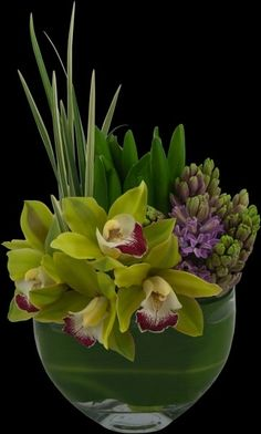 chartreuse cymbidium orchids by zullyw54