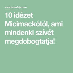 10 idézet Micimackótól, ami mindenki szívét megdobogtatja!