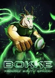 Image result for springbok rugby logo