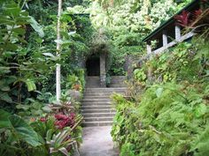 Papillote Wilderness Retreat - Inn & Gardens. Trafalgar, Dominica