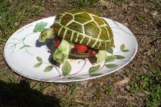 (c) Tortue en melon, by LALANNE Jacqueline