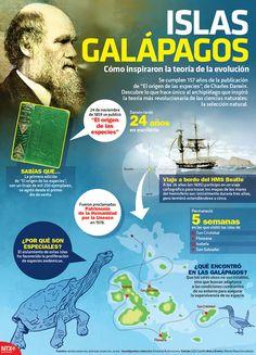 """#SabíasQue el 24 de noviembre de 1859 Charles Darwin publicó """"El origen de las especies"""", publicación que tardó 24 años en escribir. #Infographic"""