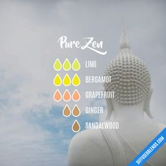 Pure Zen - Essential Oil Diffuser Blend - Bergamot is truly the be all end all when it comes to EO's. Essential Oils For Nausea, Ginger Essential Oil, Essential Oil Scents, Essential Oil Diffuser Blends, Essential Oil Uses, Young Living Essential Oils, Aromatherapy Diffuser, Diffuser Recipes, Bergamot