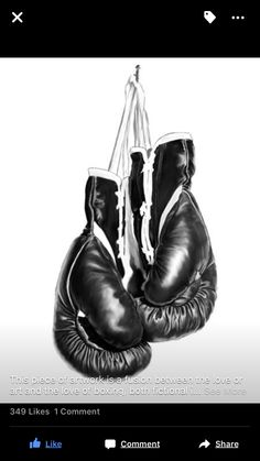 This is a photoshop drawing of boxing gloves