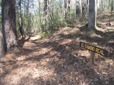This 1.5 mile-long trail segment crosses an area that has remarkable visual integrity. The Trail segment runs roughly parallel to State Road 21 and at times crosses the highway. A Caddo Indian site within the state park appears to be adjacent to the trail. Although the original site of the 1690 Mission San Francisco de los Tejas has not yet been founded, recent research conducted by Historian Robert Weddle confirms that this segment was part of El Camino Real de los Tejas.