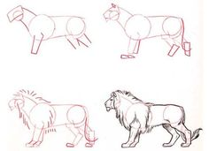 Cómo aprender a dibujar