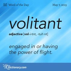 #vocabularyboost