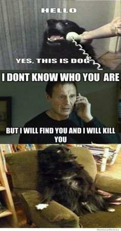 "...i literally laughed outloud on this one because i say ""i will find you and i will kill you"" all the time."