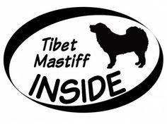 Hund Inside Auto AufkleberInside Aufkleber: Tibet Mastiff 1
