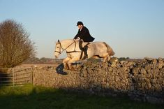 Cross Country Jumps, Dec 1st, Beach Rides, Galway Ireland, Horses For Sale, Day Off, Cob, Equestrian, Hunting