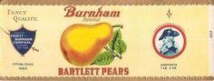 vintage label printable