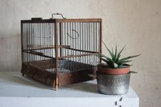 Antique French Birdcage / Vintage 1940 Rustic by FrenchAtticFinds, $75.00