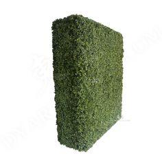 东莞市 Dongguan City Boxwood Hedge, Artificial Boxwood, Hedges, Living Fence, Shrubs