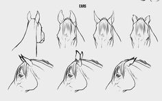 Drawing Animals in the Zoo - Drawing On Demand Horse Drawing Tutorial, Horse Pencil Drawing, Horse Drawings, Animal Drawings, Art Drawings, Drawing Animals, Animal Sketches, Art Sketches, Horse Sketch