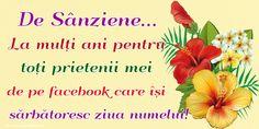 De Sânziene... La mulți ani pentru toți prietenii mei de pe facebook care își sărbătoresc ziua numelui!
