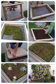 vertikaler garten How to build a plant table from succulents on a vegetable rack - Te . - How to build a plant table from succulents on a vegetable rack terrace garden ideas - Vertical Succulent Gardens, Succulent Landscaping, Vertical Garden Diy, Succulent Wall Planter, Succulent Frame, Jardim Vertical Diy, Vegetable Rack, Garden Frame, Plant Table