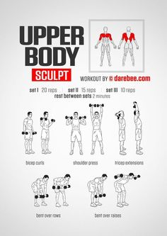Bodyweight Exercise Poster - Total Body Workout - Personal Trainer Fitness Program - Home Gym Poster - Tones Core, Abs, Legs, Gluts & Upper Body - Improves Training Routine - New Ab Workout Killer Arm Workouts, Toning Workouts, Easy Workouts, At Home Workouts, Upper Body Workouts, Dumbbell Exercises, Dumbbell Back Workout, Upper Body Home Workout, Upper Body Strength Workout