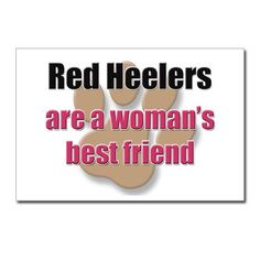 Red Heelers