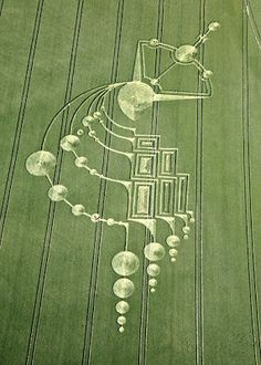 Phase 1 : Sextant Crop Circle Below Milk Hill (3), near Alton Barnes, Wiltshire. Reported 21st June 2009.
