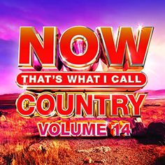Includes songs from country superstars Luke Bryan, Sam Hunt, Miranda Lambert, Luke Combs, and many more. Lauren Alaina, Sam Hunt, Dan & Shay, Kelsea Ballerini, Rascal Flatts, Florida Georgia Line, Thomas Rhett, Artist Album, Universal Music Group