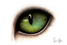 Ideas For Eye Tattoo Ideas Sketches Deviantart Cat Eye Tattoos, Cat Tattoo, Cat Eyes Drawing, Cat Drawing Tutorial, Drawing Ideas, Kitten Wallpaper, Eye Sketch, Cat Pose, Super Cat