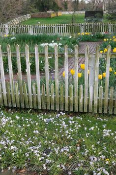 Taliaferro-Cole Garden Spring flowers and picket fences. Photo by David M. Picket Fence Garden, Small Garden Fence, Garden Gates And Fencing, Diy Fence, Backyard Fences, Easy Garden, Herb Garden, Fence Ideas, Picket Fences