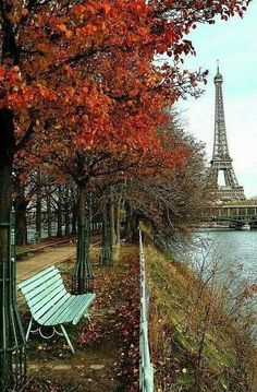 Eiffel Tower and Autumn leaves #ShoebuyFallFashion