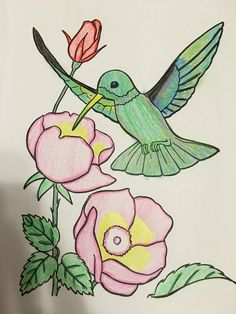 15 Best Colorama Images Coloring Books Coloring Pages