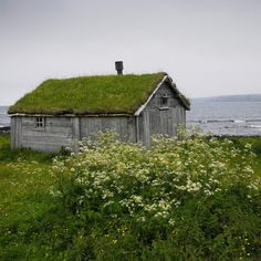 Hytte in Hamningberg, Finnmark Fylke, Norway by Viggo Johansen Cottages By The Sea, Cabins And Cottages, Beach Cottages, Log Cabins, Living Roofs, Living Walls, House By The Sea, Old Barns, Little Houses
