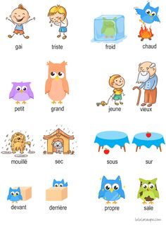 Learn French with A Cup of French! Easy and fun lessons with infographics and videos. You can enjoy your cup of French wherever you want and at your own pace. French Flashcards, Flashcards For Kids, French Worksheets, French Language Lessons, French Language Learning, French Lessons, German Language, Spanish Lessons, Japanese Language