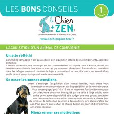 Les Bons Conseils du Chien + ZEN : l'acquisition d'un animal Acquisition, Education Canine, The Collector, Maya, Zen, Marketing, My Love, Dogs, Animals
