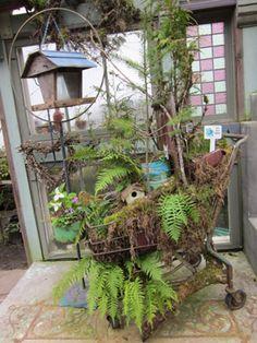 Bosky Dell Native Plant Nurssery
