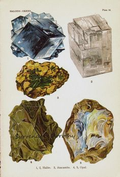 Halite Atacamite Opal Crystal Stone Mineral Vintage Lithograph Edwardian Geology Print To Frame 10 Antique Prints, Antique Art, Vintage Prints, Rocks And Minerals, Stones And Crystals, Illustration Art, Art Prints, Biomimicry Architecture, Nature