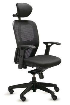 dauphin office chair at office