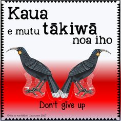 I am on a MISSION to have te reo Māori spoken in every classroom in Aotearoa. This pae tukutuku (website) is to tautoko those many kaiako who are both teaching and learning te