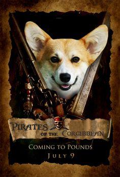 Corgi Movies: A Corgicopia of Fine Furry Films - Comediva Cute Corgi Puppy, Welsh Corgi Puppies, Corgi Mix, Dogs And Puppies, Doggies, Funny Corgi Pictures, Funny Animal Pictures, Anime Puppy, Baby Animals