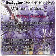 Scriggler Poem of the Day: Shades of Grey by Tiffany Goldstein https://scriggler.com/DetailPost/Poetry/36944
